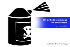 DIY methods can damage the environment