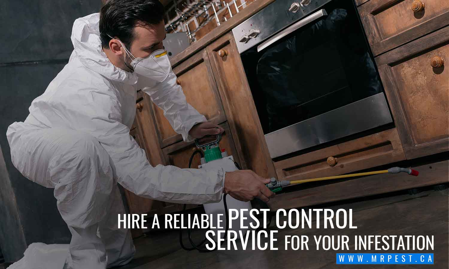 Hire a reliable pest control service for your infestation