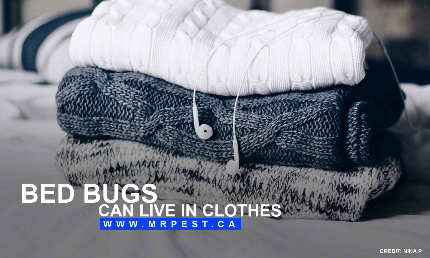 Bed bugs can live in clothes