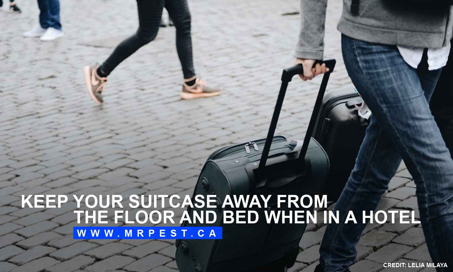 Keep your suitcase away from the floor and bed when in a hotel
