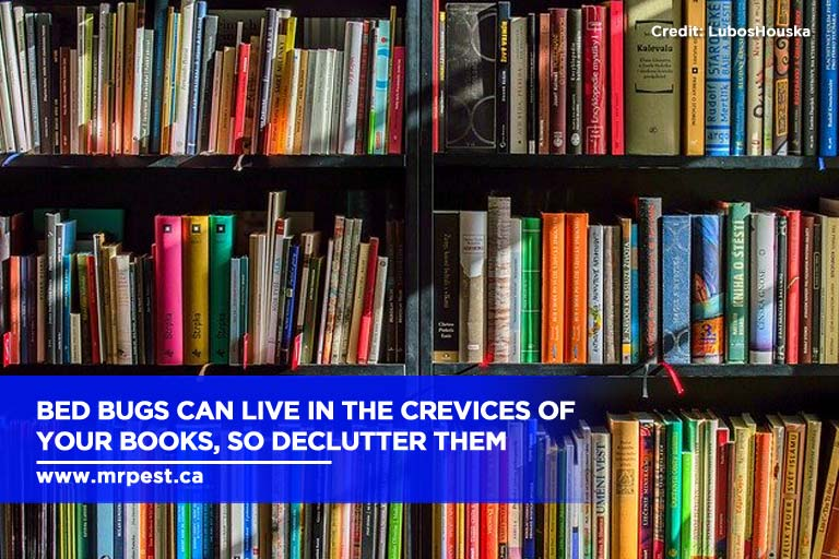 Bed bugs can live in the crevices of your books, so declutter them