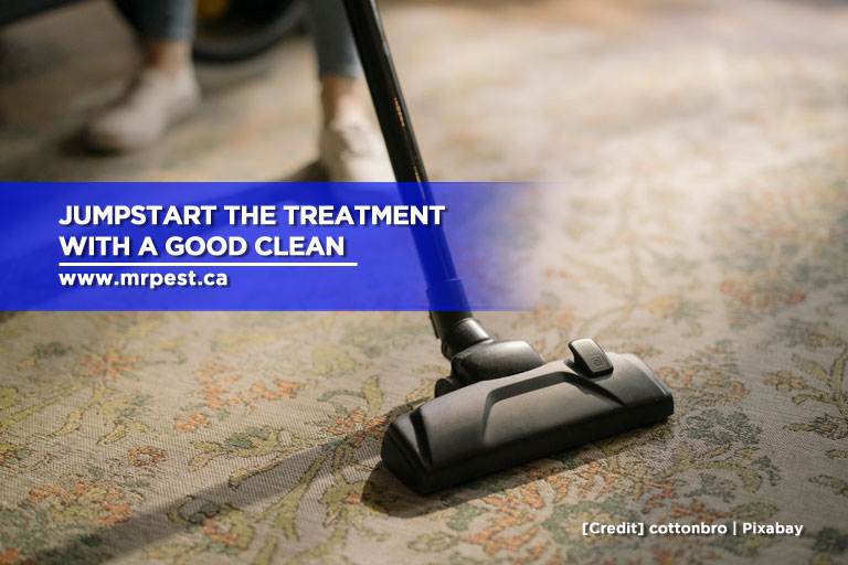 Jumpstart the treatment with a good clean