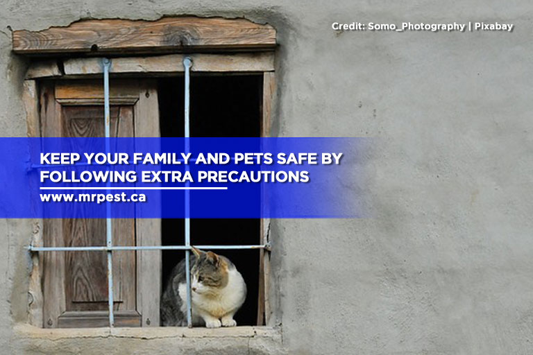 Keep your family and pets safe by following extra precautions