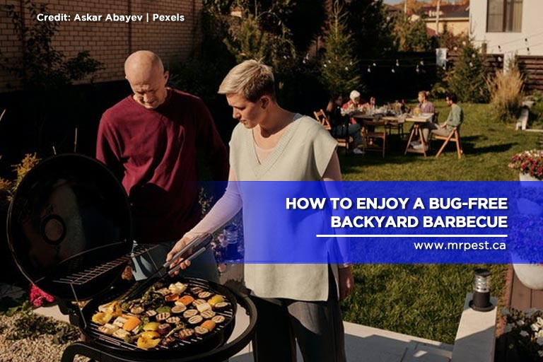 How to Enjoy a Bug-Free Backyard Barbecue