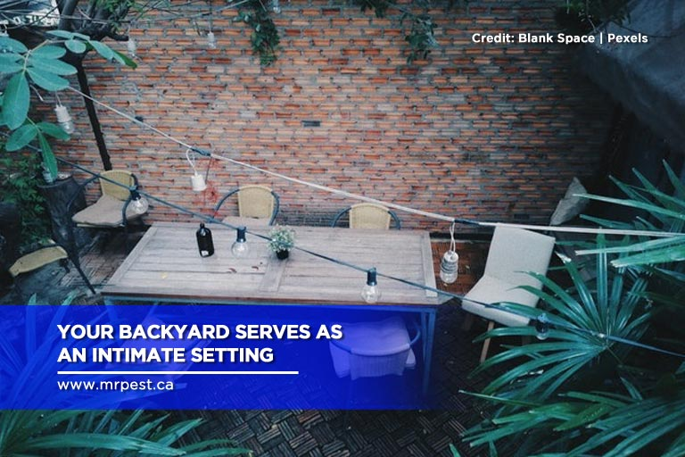 Your backyard serves as an intimate setting