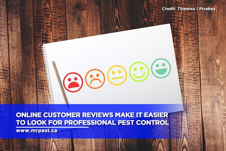 Online customer reviews make it easier to look for professional pest control