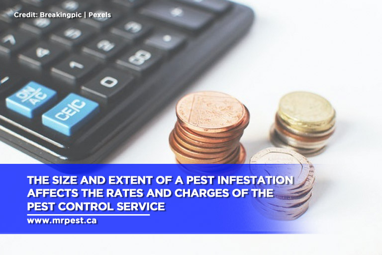 The size and extent of a pest infestation affects the rates and charges of the pest control service
