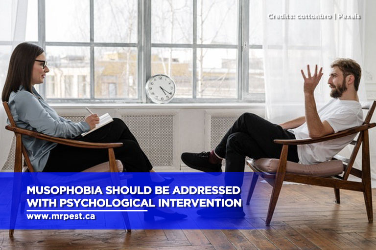 Musophobia should be addressed with psychological intervention