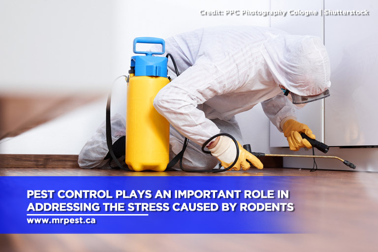 Pest control plays an important role in addressing the stress caused by rodents