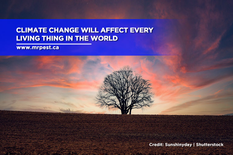 Climate change will affect every living thing in the world