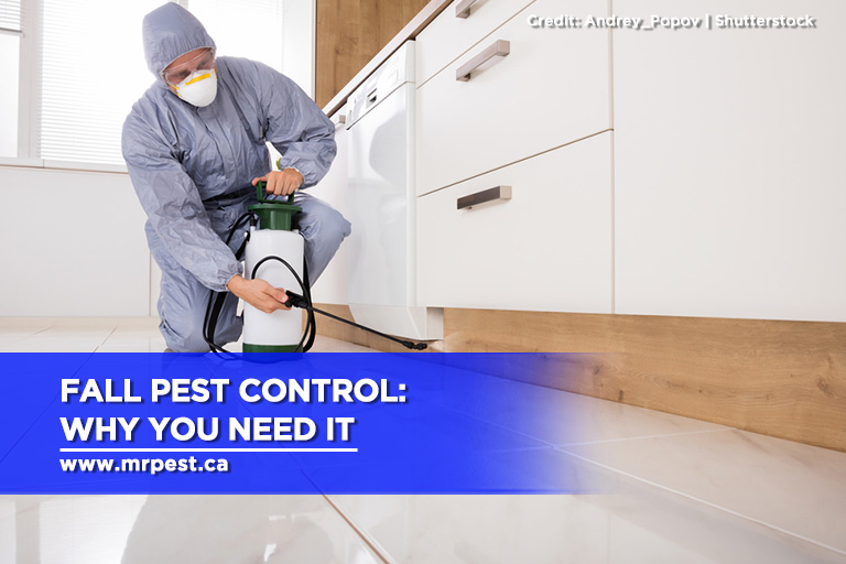 Fall Pest Control: Why You Need It