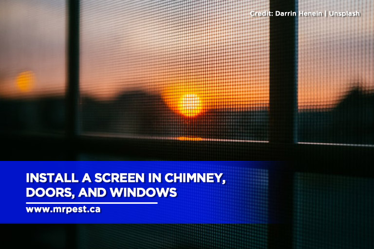 Install a screen in chimney, doors, and windows