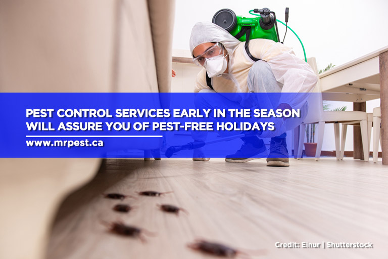 Pest control services early in the season will assure you of pest-free holidays